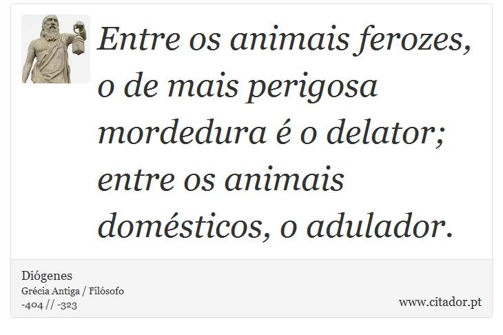 Entre os animais ferozes, o de mais perigosa mordedura é o delator; entre os animais domésticos, o adulador. - Diógenes - Frases
