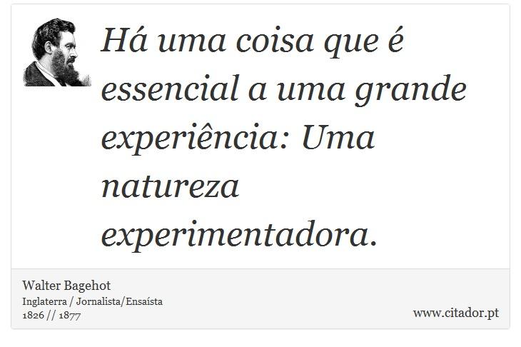 Há uma coisa que é essencial a uma grande experiência: Uma natureza experimentadora. - Walter Bagehot - Frases