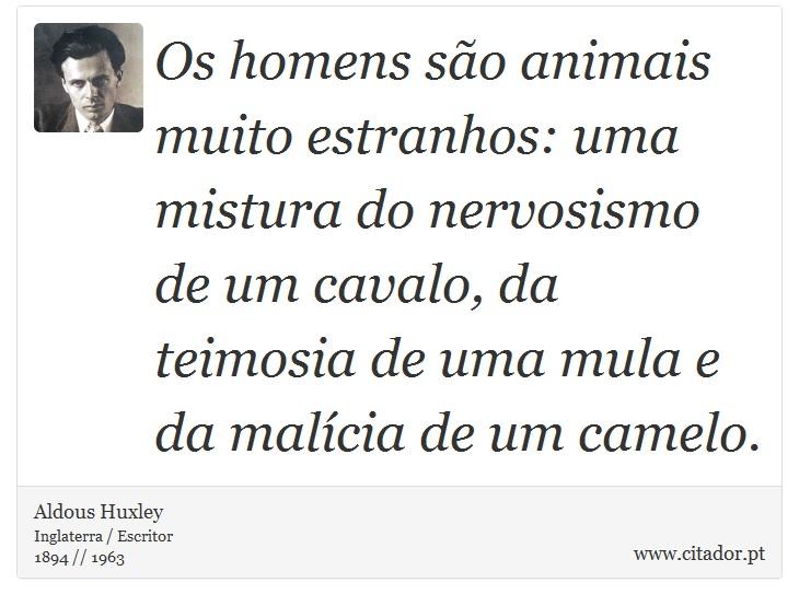 Os homens são animais muito estranhos: uma mistura do nervosismo de um cavalo, da teimosia de uma mula e da malícia de um camelo. - Aldous Huxley - Frases