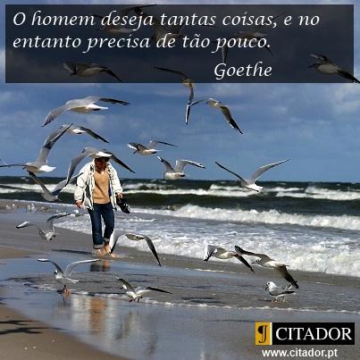 Desejo sem Limites - Johann Wolfgang von Goethe : O homem deseja tantas coisas, e no entanto precisa de tão pouco.