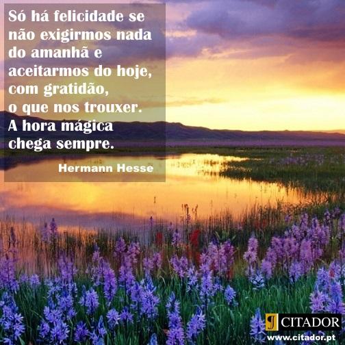 A Hora Mágica - Herman Hesse : Só há felicidade se não exigirmos nada do amanhã e aceitarmos do hoje, com gratidão, o que nos trouxer. A hora mágica chega sempre.