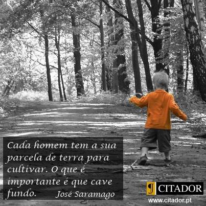 Vive Profundamente - José Saramago : Cada homem tem a sua parcela de terra para cultivar. O que é importante é que cave fundo.
