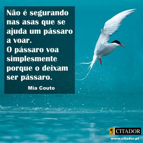 Deixar Ser - Mia Couto : Não é segurando nas asas que se ajuda um pássaro a voar. O pássaro voa simplesmente porque o deixam ser pássaro.