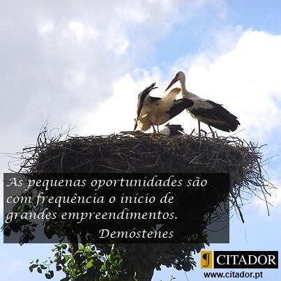 As Pequenas Oportunidades - Demóstenes : Pequenas oportunidades são muitas vezes o começo de grandes empreendimentos.