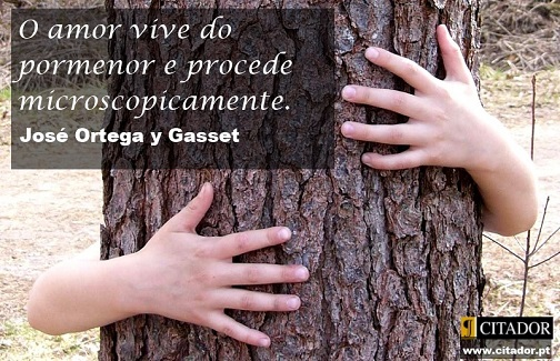 Amor Microscópico - José Ortega y Gasset : O amor vive do pormenor e procede microscopicamente.